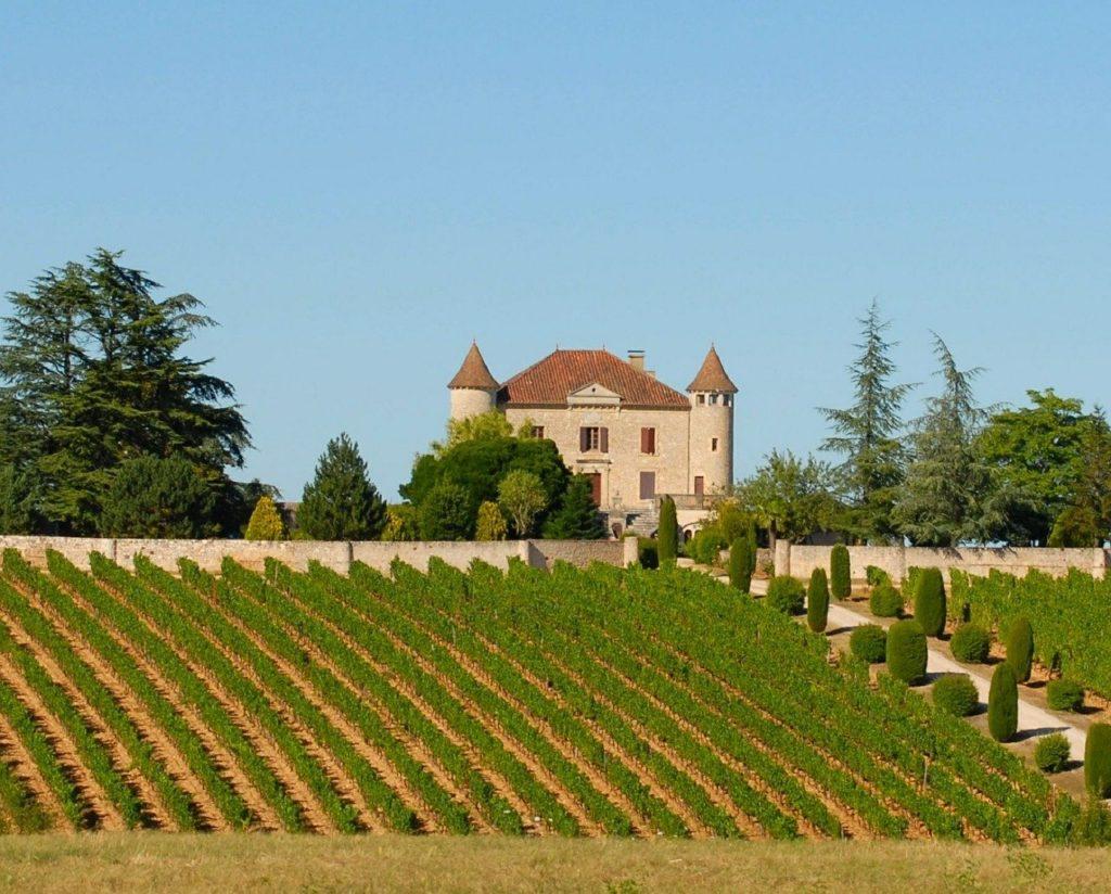 Chateau et vignes